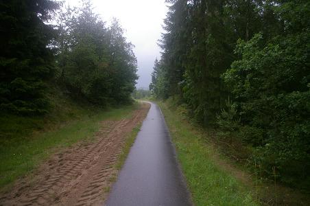 Radweg in Dänemark Richtung Silkeborg