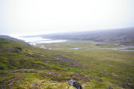 Þaralátursfjörður