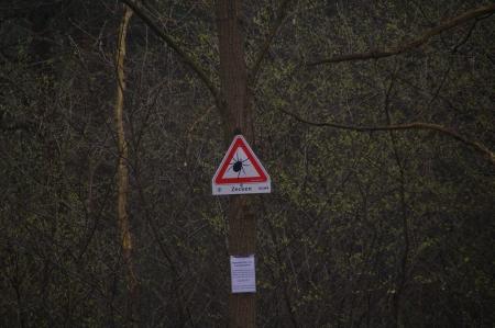 Warnung vor gefährlichen Tieren, keiner warnt vor Nacktschnecken!