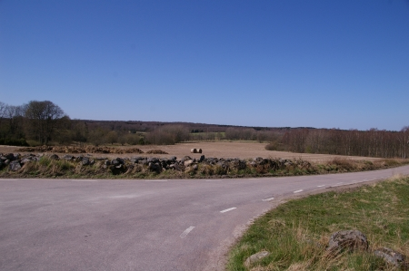 Felder in Schonen