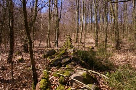 fast 3000 Jahre alte Steinwälle