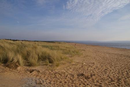 Der Strand in Mellbystrand