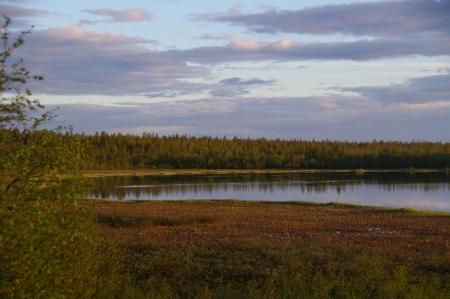 Sotkajärvi