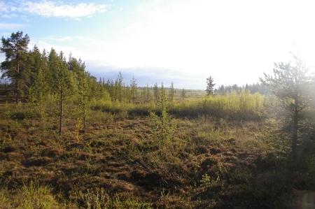 früh morgens in  Finnland
