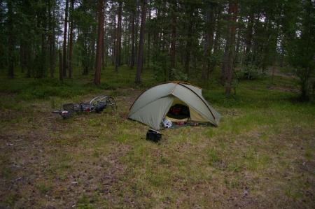 Bei Inari im Wald