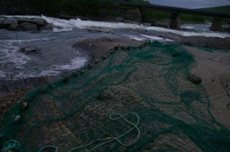 Netz zum Lachsfang