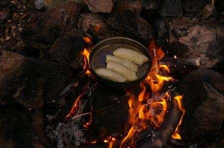 Gebratene Bananen mit Honig