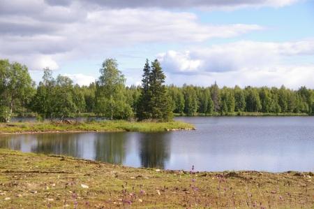 Auf dem Weg nach Sodankylä