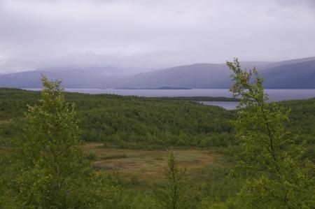 An der E10 Richtung Narvik
