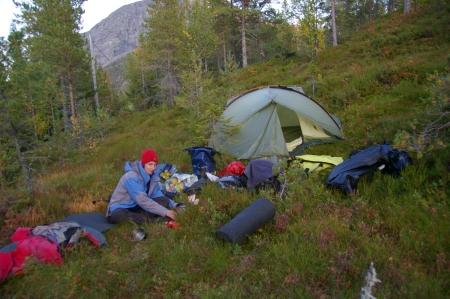Camp mit ganz vielen Blaubeeren