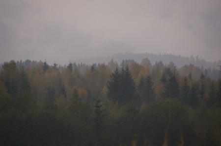 Morgennebel hängt in den Bergen